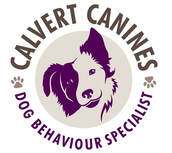 CALVERT CANINES - Dog Training & Behaviourist